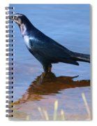 Crow In The Water Spiral Notebook
