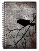 Crow Thoughts Collage Spiral Notebook