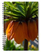 Crown Imperial Flowers Spiral Notebook