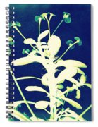 Crown Of Thorns - Blue Spiral Notebook