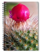 Crowned Beauty Spiral Notebook