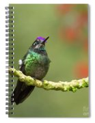 Crowned Hummingbird Spiral Notebook