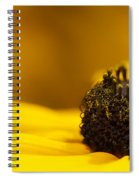 Crowning Sunshine Spiral Notebook