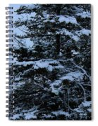 Crows Perch - Snowstorm - Snow - Tree Spiral Notebook
