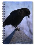Crow's Pyramid Spiral Notebook