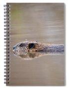 Cruisin' Beaver Spiral Notebook
