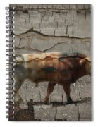 Crumbling Signage Painted Barn  Spiral Notebook
