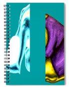 Crushing Emotion Spiral Notebook