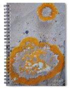 Crustose Lichen, Utah Spiral Notebook