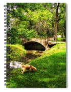 Cruz At Deer Creek Bridge Dwight Il Spiral Notebook