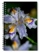 Crying Fringed Iris-iris Japonica Spiral Notebook