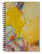 Crystal Spiral Notebook