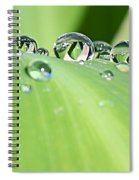 Crystal Clear Spiral Notebook