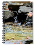 Crystal Clear Waters Of Hurricane Branch Spiral Notebook