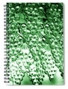 Crystal Green Spiral Notebook