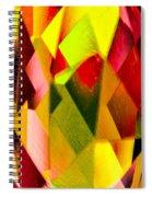 Crystal Lights Spiral Notebook