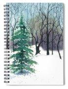 Crystal Morning Spiral Notebook