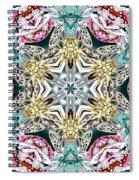 Crystal Mystery Spiral Notebook
