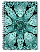 Crystal Perspective Spiral Notebook