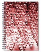 Crystal Red Spiral Notebook