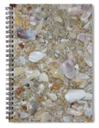 Crystal Shells Spiral Notebook