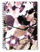 Crystalline    Spiral Notebook