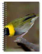 Cuban Melodius Finch Spiral Notebook