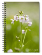Cuckooflower Spiral Notebook