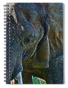 Cuddles In Search Spiral Notebook