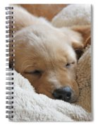 Cuddling Labrador Retriever Puppy Spiral Notebook