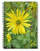 Cup Plant Blooms Spiral Notebook