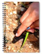 Curiosity Of A Child Spiral Notebook