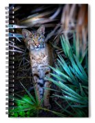 Curious Bobcat Spiral Notebook