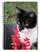 Tree Climber Spiral Notebook