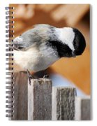 Curious Chickadee Spiral Notebook