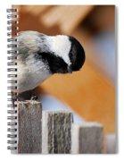 Curious Chickadee Spiral Notebook