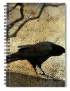 Curious Crow Spiral Notebook