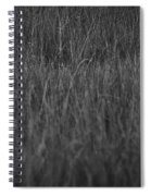 Curious Deer Spiral Notebook