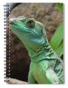 Curious Gaze Spiral Notebook