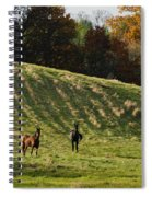 Curious Horses Spiral Notebook