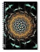 Curious Moth Spiral Notebook
