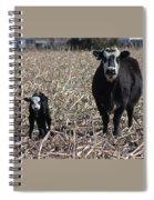Curious Pair Spiral Notebook