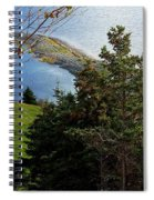 Curious Sheep In A Grassy Meadow Spiral Notebook