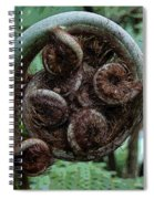 Curley Spiral Notebook