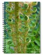 Curly Fern Spiral Notebook
