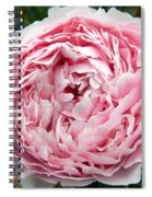 Curly Head Spiral Notebook