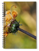 Curly Unfurling Daisy Spiral Notebook