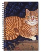 Curry The Cat Spiral Notebook
