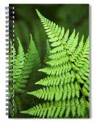 Curved Fern Leaf Spiral Notebook