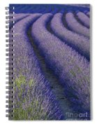 Curved Rows Spiral Notebook